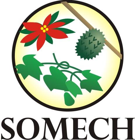 SOMECH